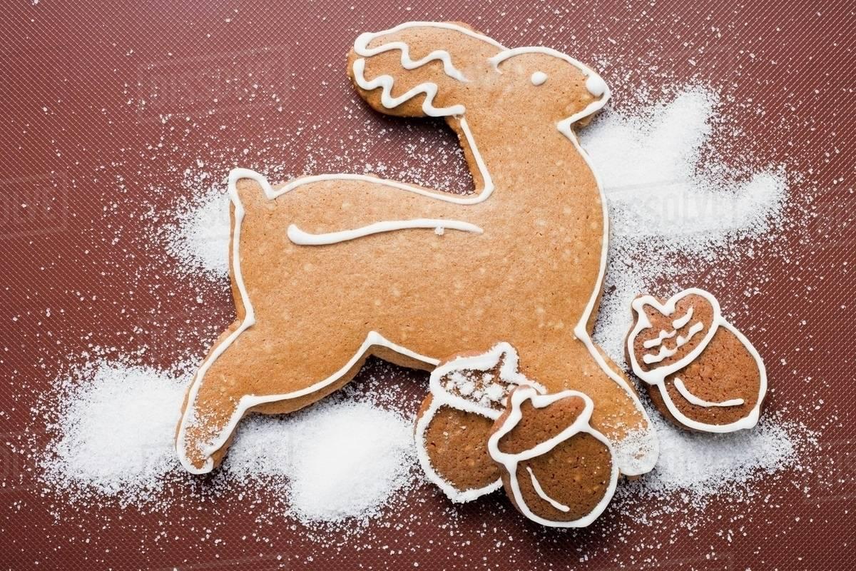 Gingerbread Reindeer And Acorns Stock Photo