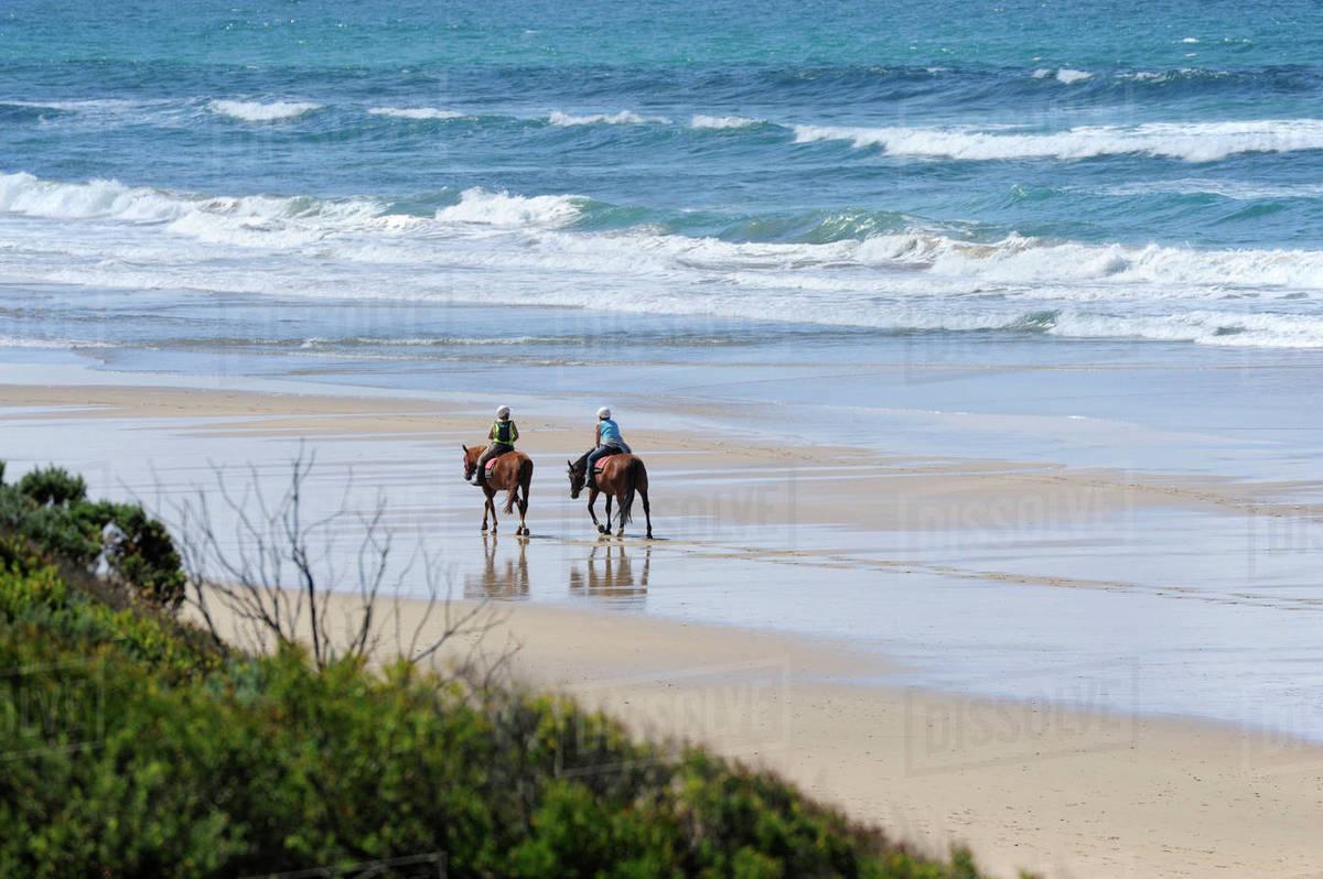 Australia Victoria Great Ocean Road Horseback Riding On The Beach Between Torquay And Lorne