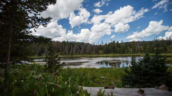 Timelapse in the Uinta Mountains on a slider as clouds move through the sky. Royalty-free stock video