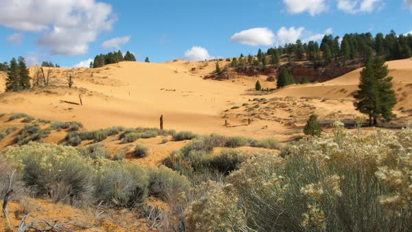 Static view of desert landscape at sand dunes in Utah Royalty-free stock video