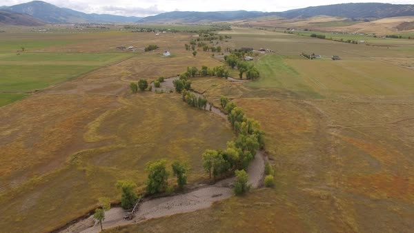 Aerial view flying over winding dry riverbed with trees through the Wyoming landscape. Royalty-free stock video