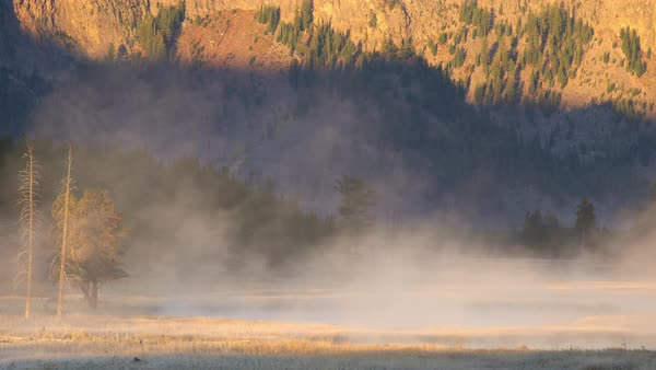 Fog rising from river in the morning in Yellowstone Royalty-free stock video