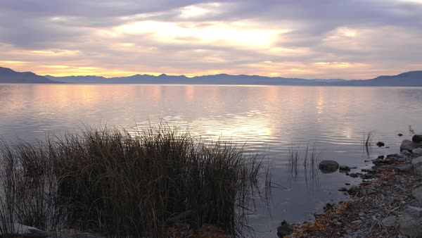 Utah Lake at sunset viewed from shore behind the reeds on a calm evening watching the water ripple and the color glow through the clouds. Royalty-free stock video