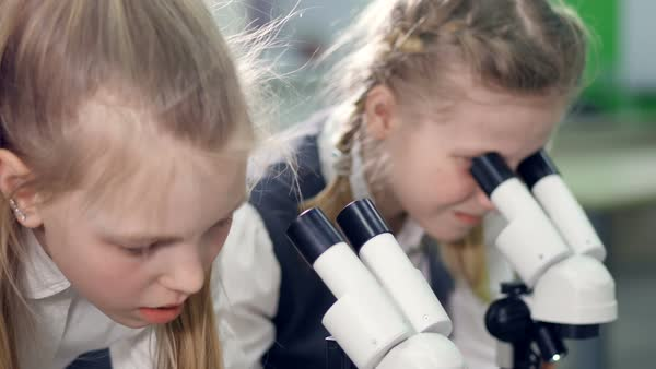 The close-up shot of the elementary school girls, looking in the microscopes Royalty-free stock video