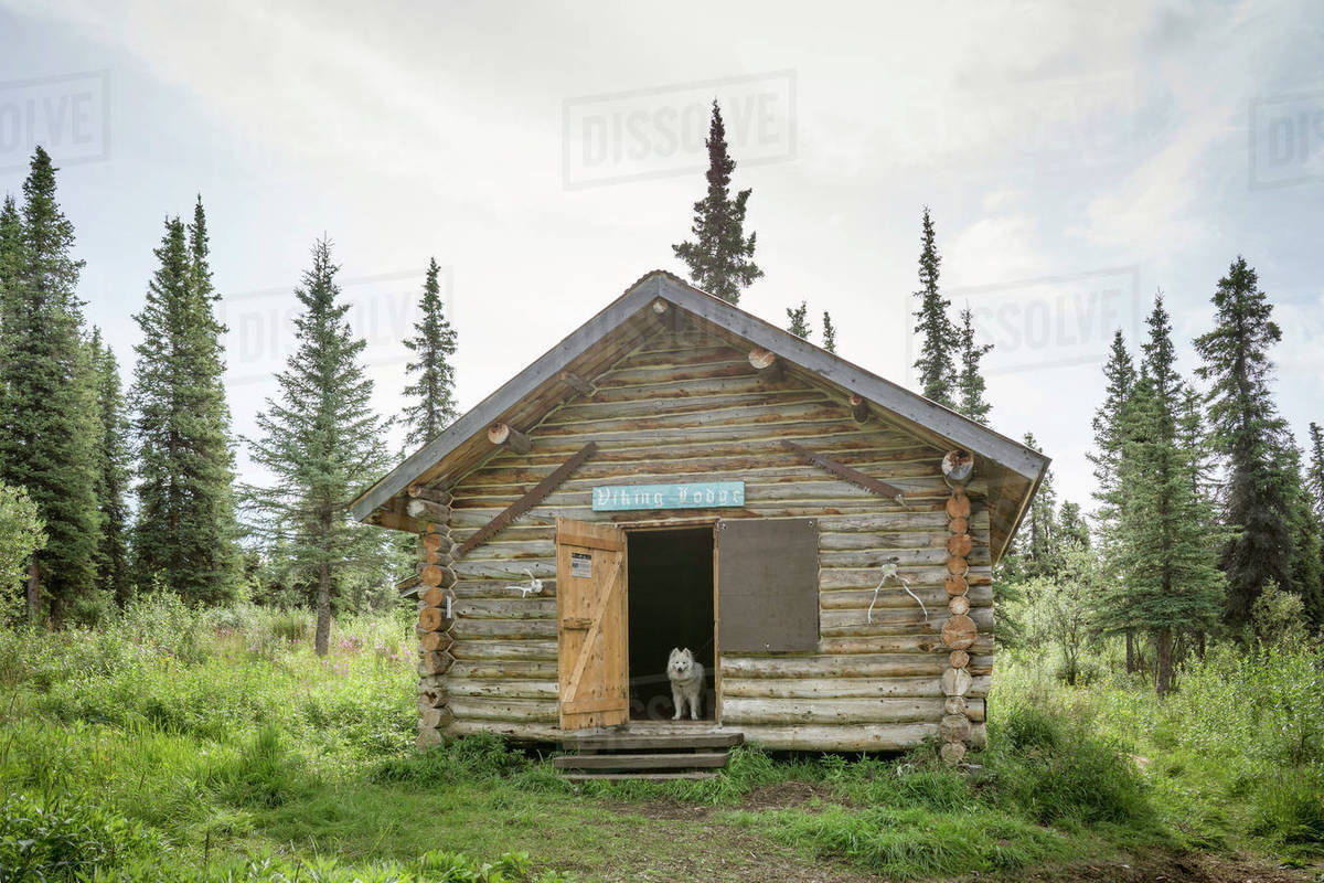Viking Lodge Public Use Cabin Wrangell St. Elias National Park And Preserve