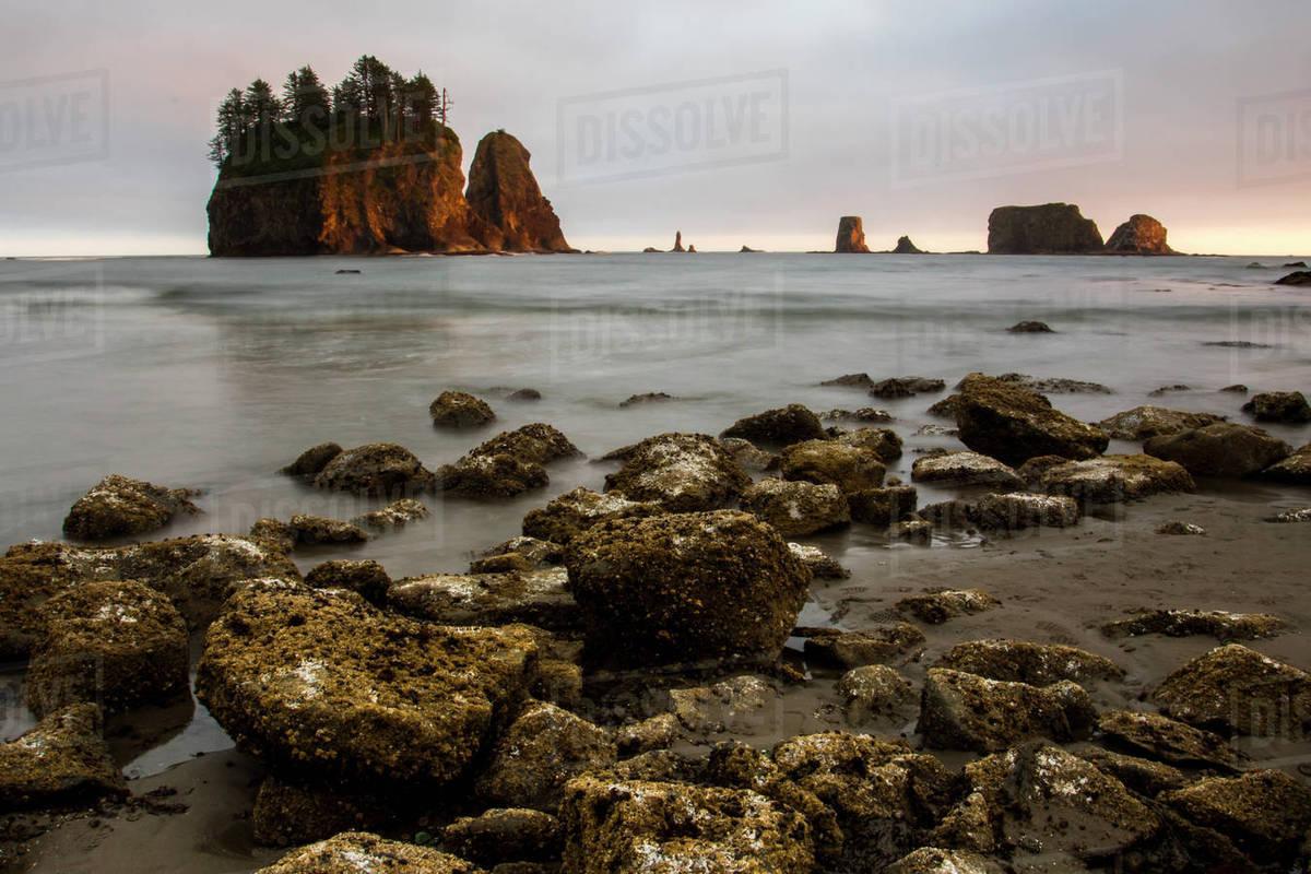 Beautiful natural scenery of Second Beach with islands and rocks at sunset,  La Push, Washington State, USA stock photo