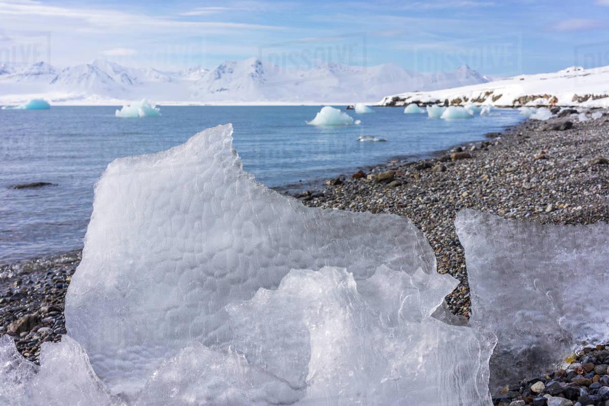 Close Up Of Ice Melting On Rocky Coastal Beach Of Arctic Sea Svalbard Stock Photo Dissolve