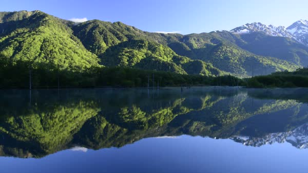 Quiet pond in Nagano Prefecture, Japan Royalty-free stock video