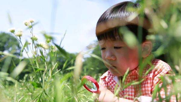 Japanese young boy playing with magnifying glass in a park, Tokyo, Japan Royalty-free stock video