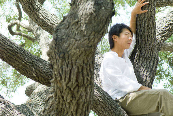Man sitting in tree, looking away, side view Royalty-free stock photo