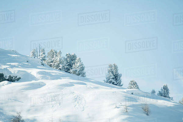 Snow-covered mountainside Royalty-free stock photo
