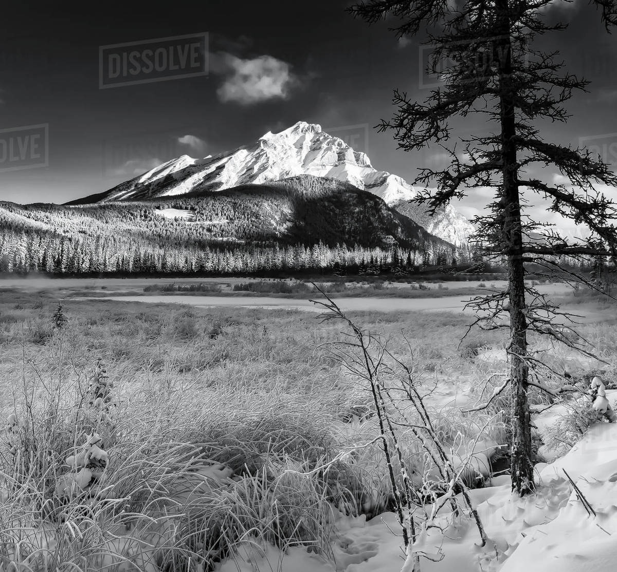 Black and white shot of vermillion lakes and the cascade mountain range in banff national park alberta canada