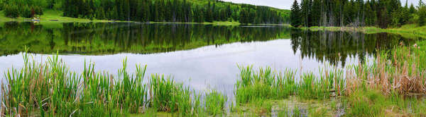 Panorama of still waters in Foothills Southern Alberta Royalty-free stock photo