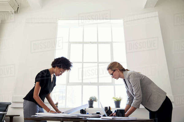 Two women working at opposite sides of a desk in an office Royalty-free stock photo