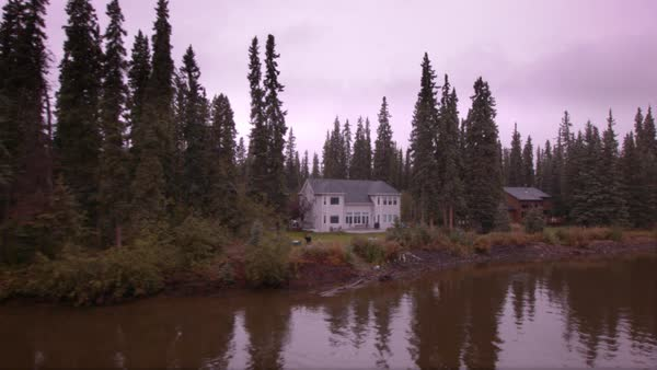 Locked-off shot of houses on the waterfront with tall pine trees Rights-managed stock video