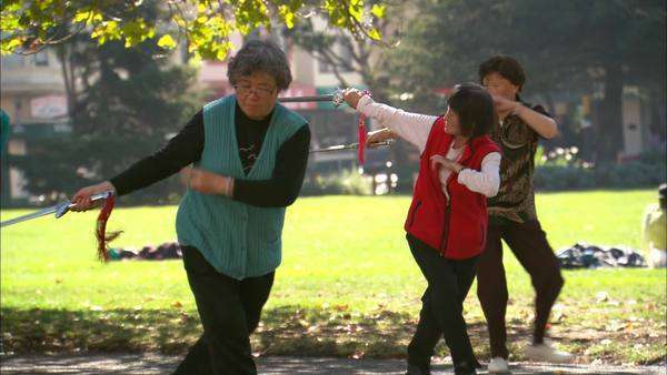 Medium shot of four women practicing Tai-Chi in the park on an autumn morning Rights-managed stock video
