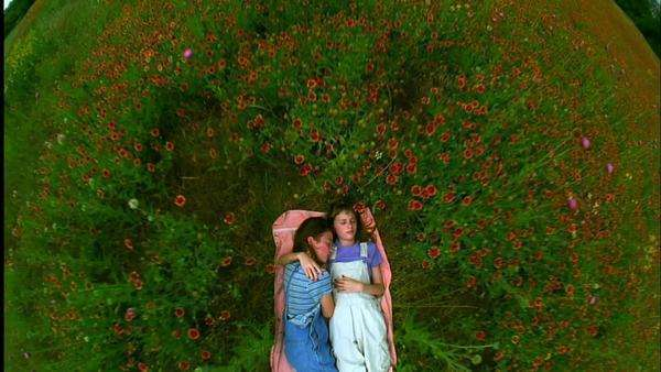 Push-out shot of two girls sleeping in a flower field Rights-managed stock video