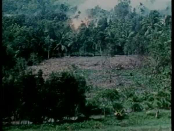 Slow motion of an airplane dropping napalm bombs in Vietnam War Rights-managed stock video