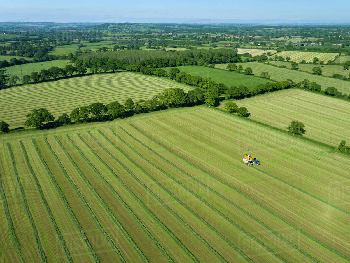 grass field aerial. Aerial View Of Summer Grass Silage Fields Being Harvested, Farmland And Country Landscape Field E