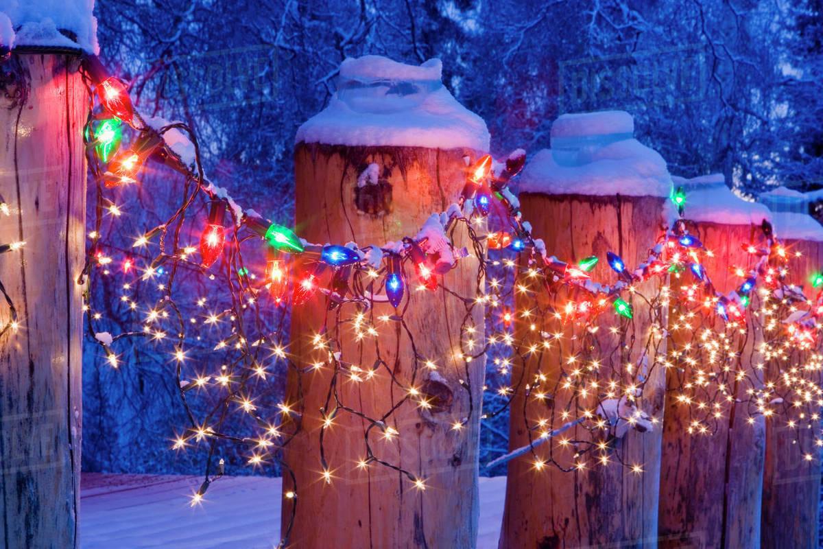Christmas Lights Close Up