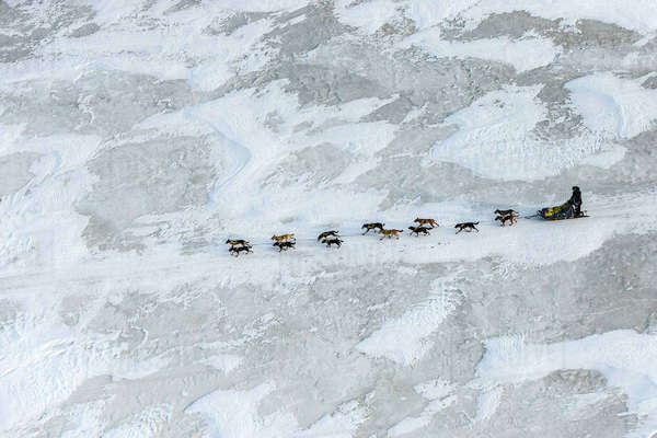 Melissa Owens-Stewart on the trail between Nikolai and McGrath during Iditarod 2016, Alaska. Rights-managed stock photo