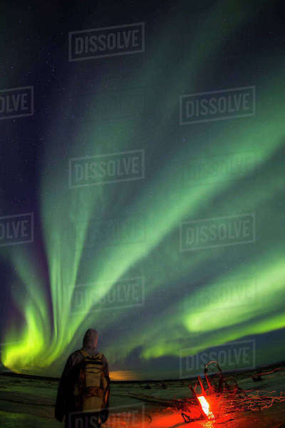 Man watching northern lights overhead while standing next to a campfire along the Delta River near Delta Junction, Interior Alaska, USA Rights-managed stock photo