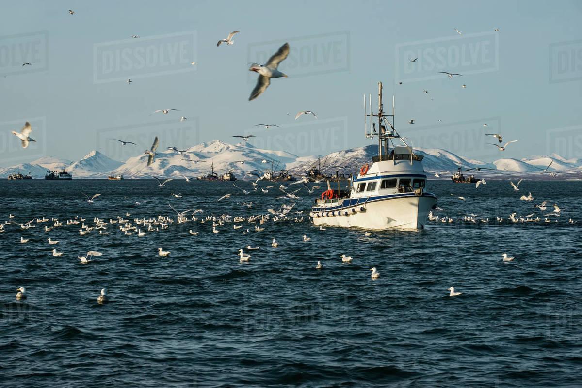 Drift boat in Kulukak Bay in the Bristol Bay region of Alaska in late  spring, Southwest Alaska, USA stock photo