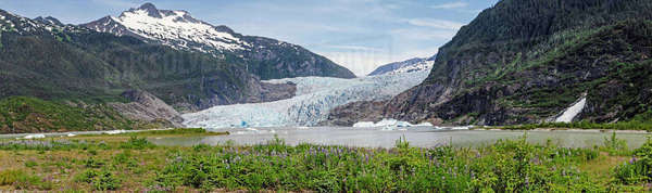 Panorama view of Mendenhall Glacier, Tongass National Forest, Southeast Alaska, summer Rights-managed stock photo