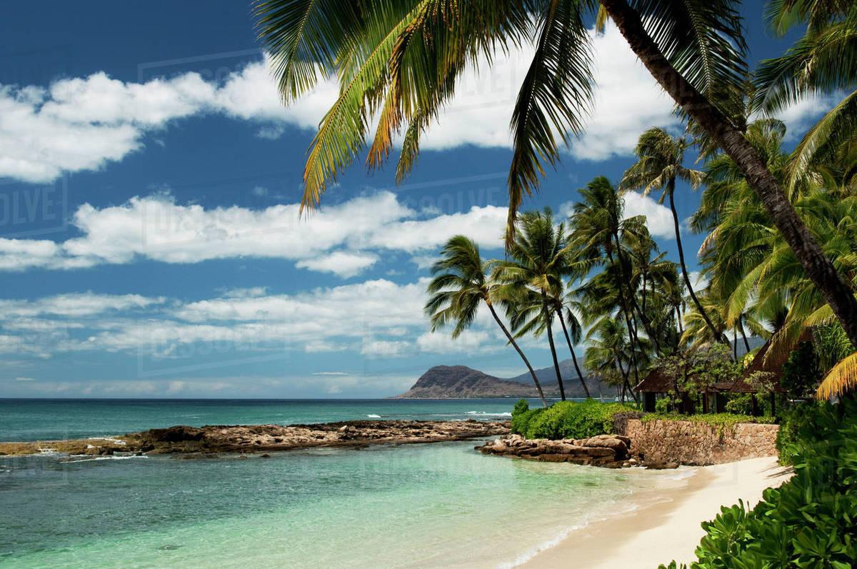 Hawaii Oahu Paradise Cove Beach