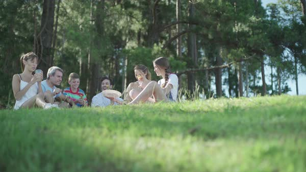 Family and friends having picnic together Royalty-free stock video