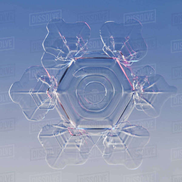 Snowflake magnified under microscope, Lilehammer, Norway Rights-managed stock photo