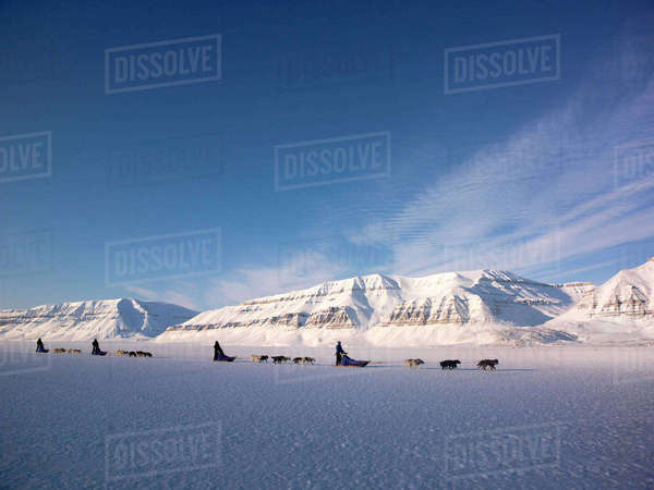 Dog-sledging through Arctic landscape, Sassenfjord, Svalbard, Norway, March 2013. Rights-managed stock photo