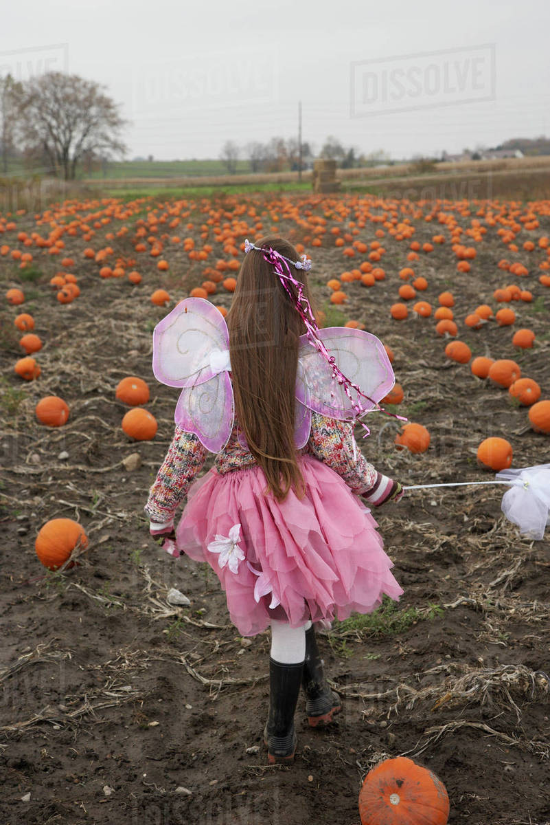 Girl dressed as fairy in pumpkin patch Royalty-free stock photo