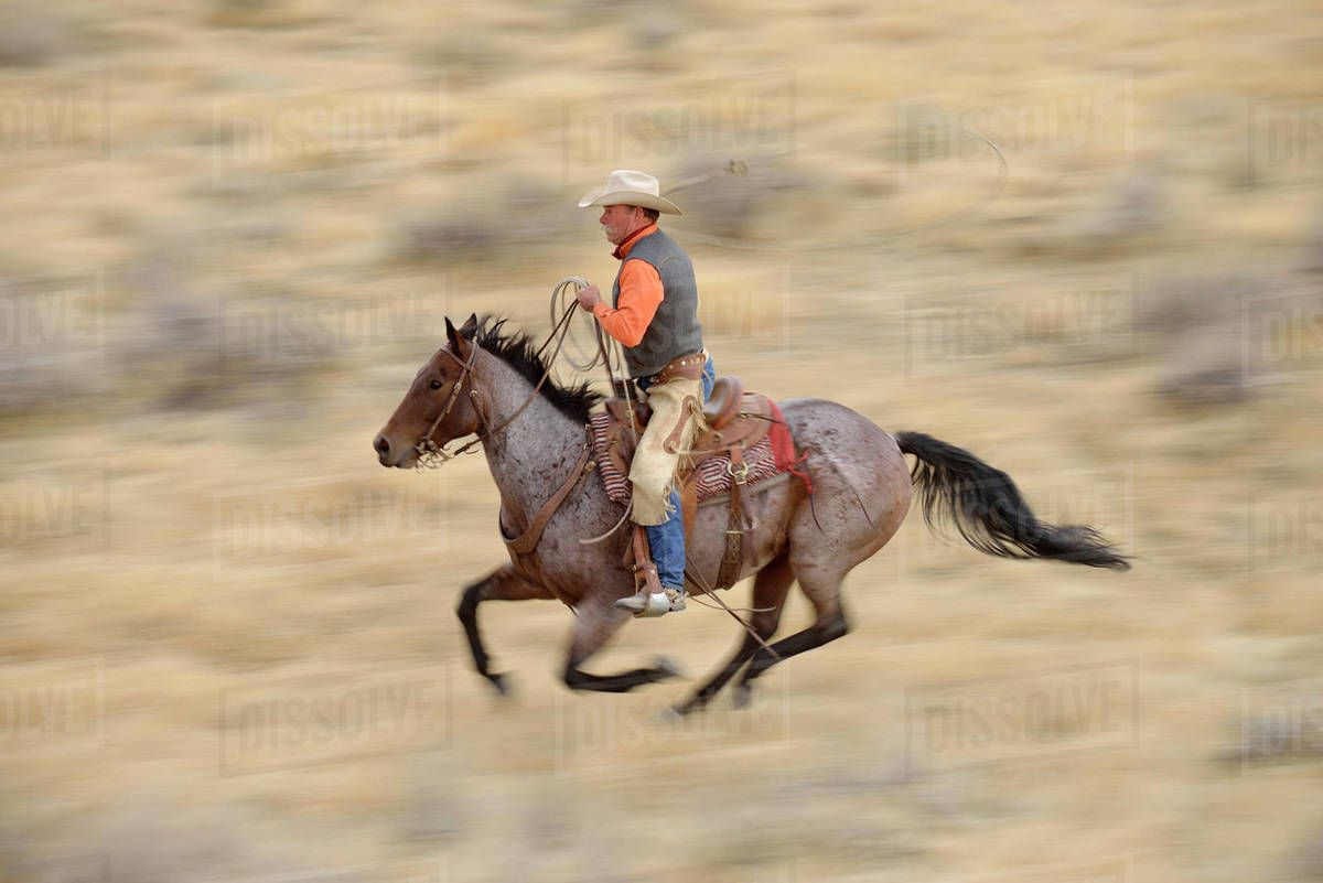 Blurred Motion Of Cowboy On Horse Galloping In Wilderness Rocky