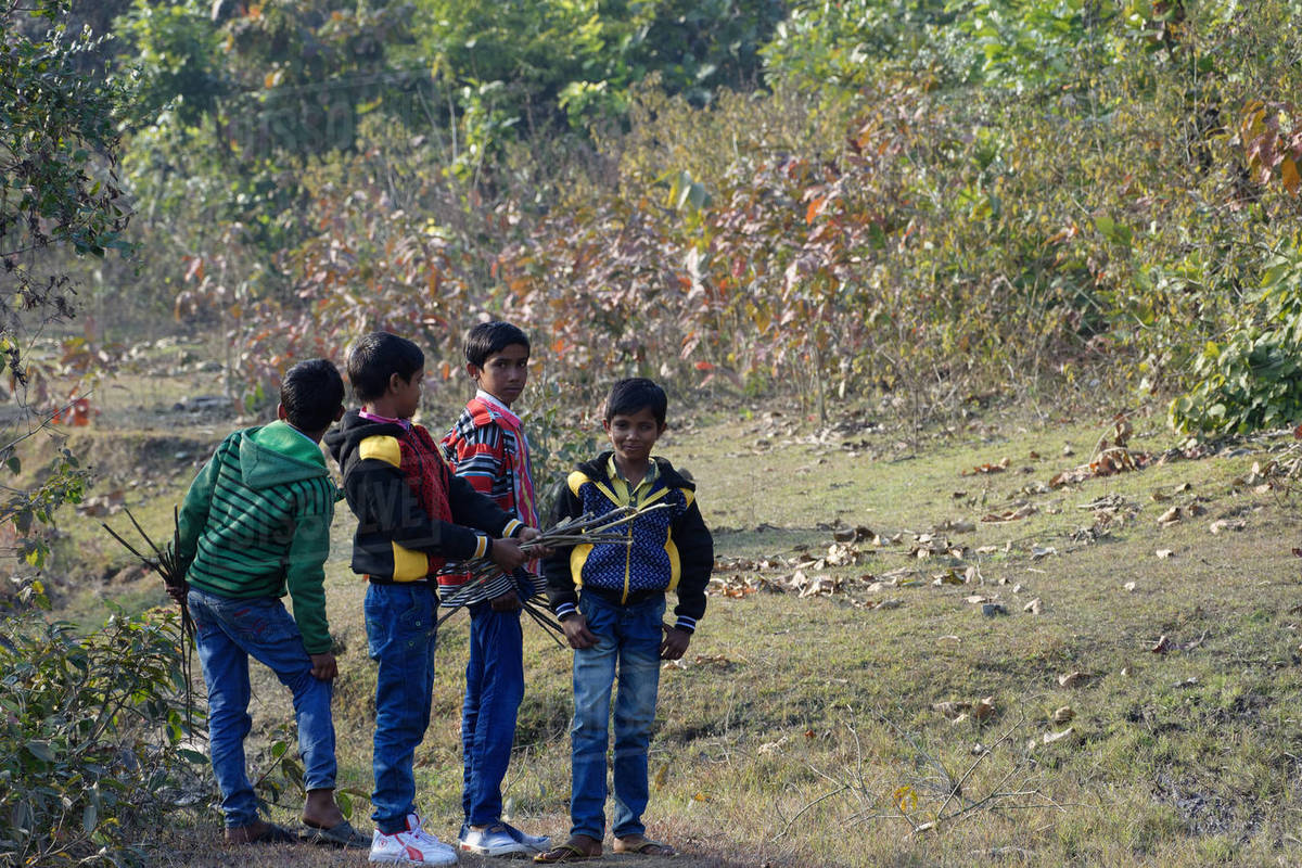 Little local Indian boys are playing in green forest Royalty-free stock photo