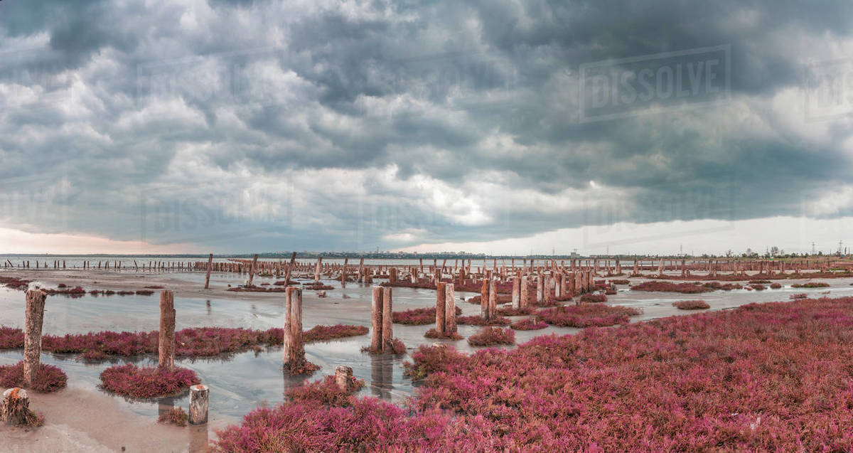 Storm clouds over the Kuyalnik Salty drying estuary in Odessa, Ukraine Royalty-free stock photo