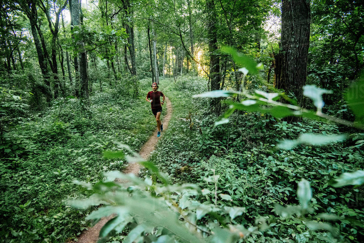 Trail running the Mountain To Sea Trail. Asheville, NC. Royalty-free stock photo