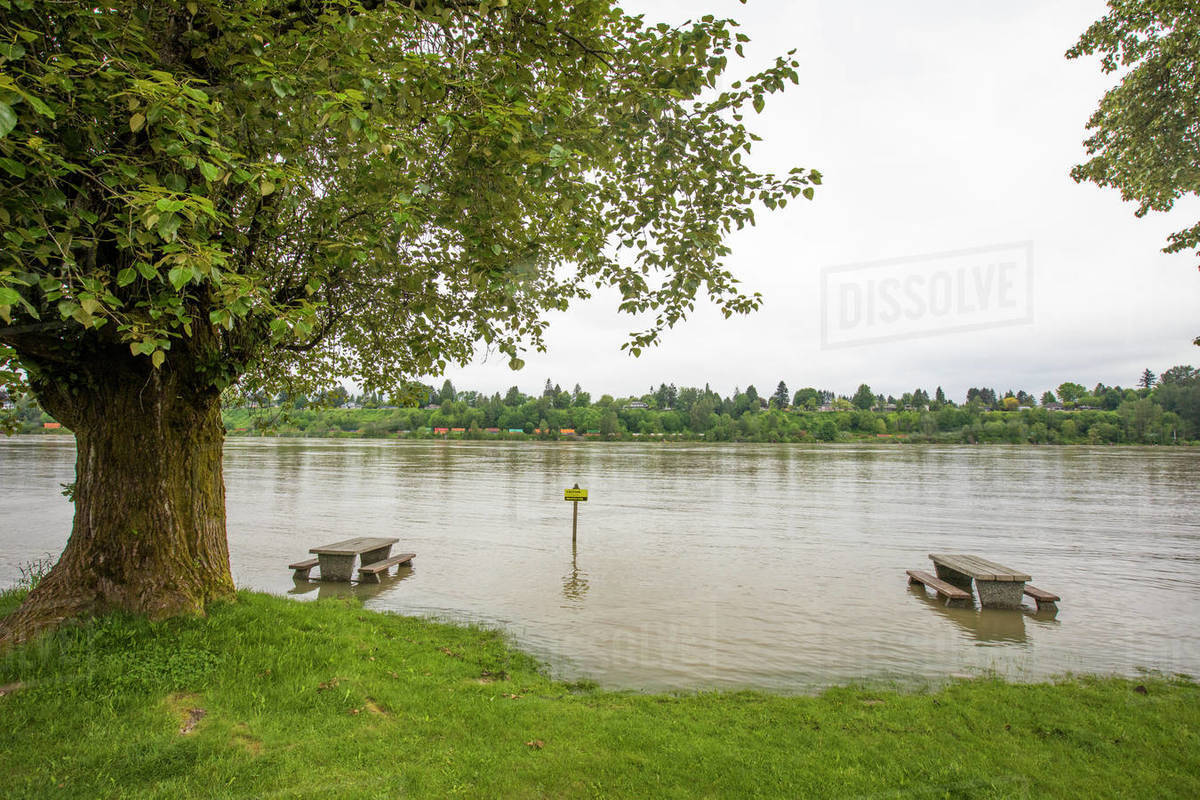 Flooded picnic site along the Fraser River, British Columbia, Canada. Royalty-free stock photo