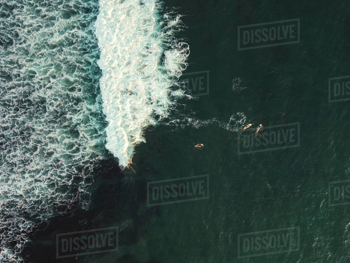 Aerial view of surfers Royalty-free stock photo