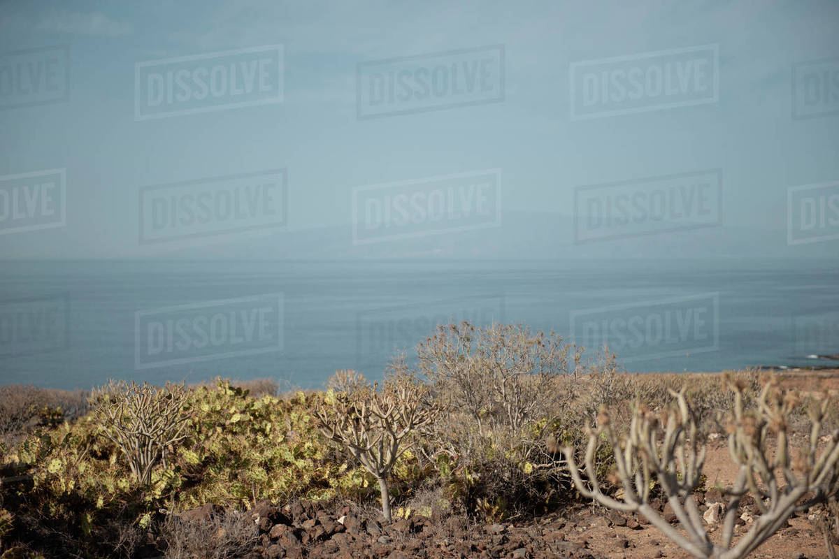 Seascape with Gran Canaria Island on the background during sunny day Royalty-free stock photo