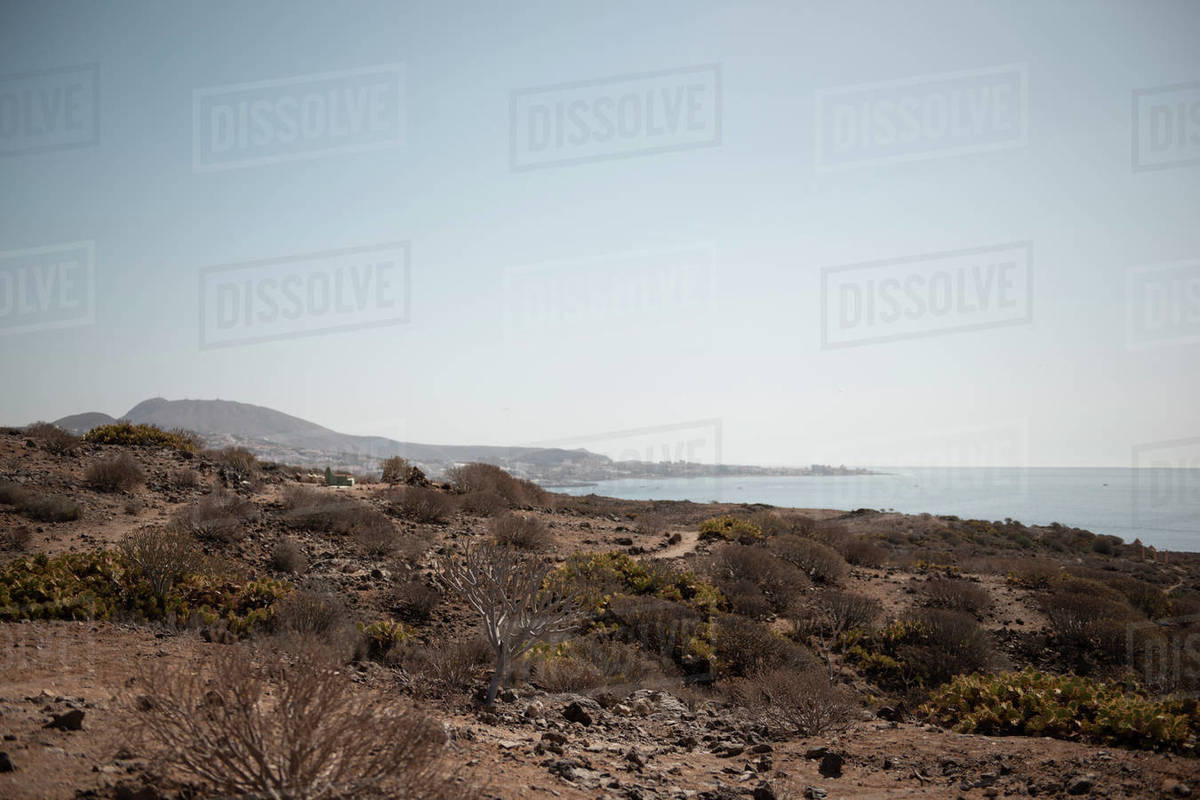 Desert landscape against seascape and blue clear sky during sunny day Royalty-free stock photo