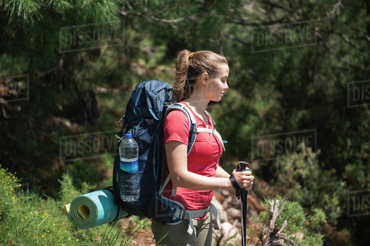 Young female hiker standing and looking down against trees in forest Royalty-free stock photo