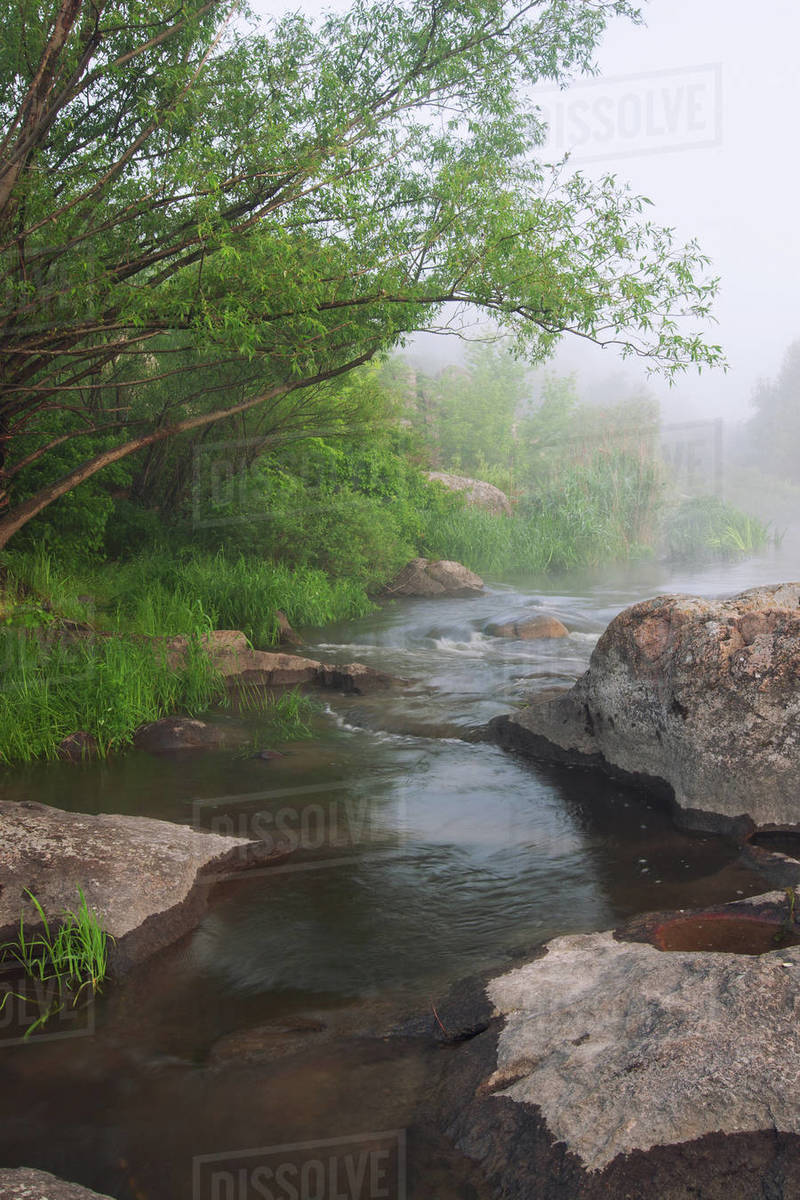Green summer river landscape Royalty-free stock photo