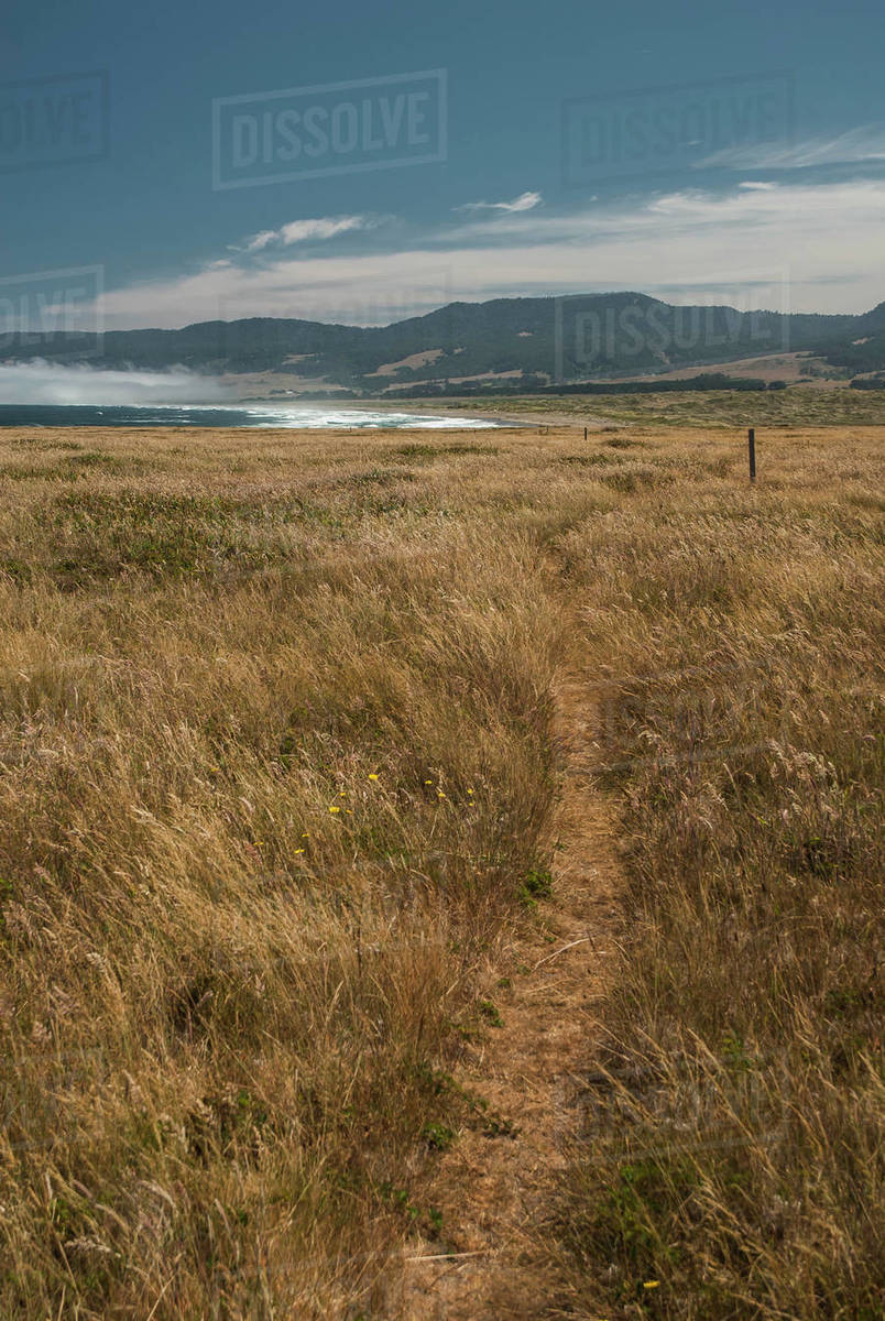 A trail winds through a grassy field towards a empty beach Royalty-free stock photo