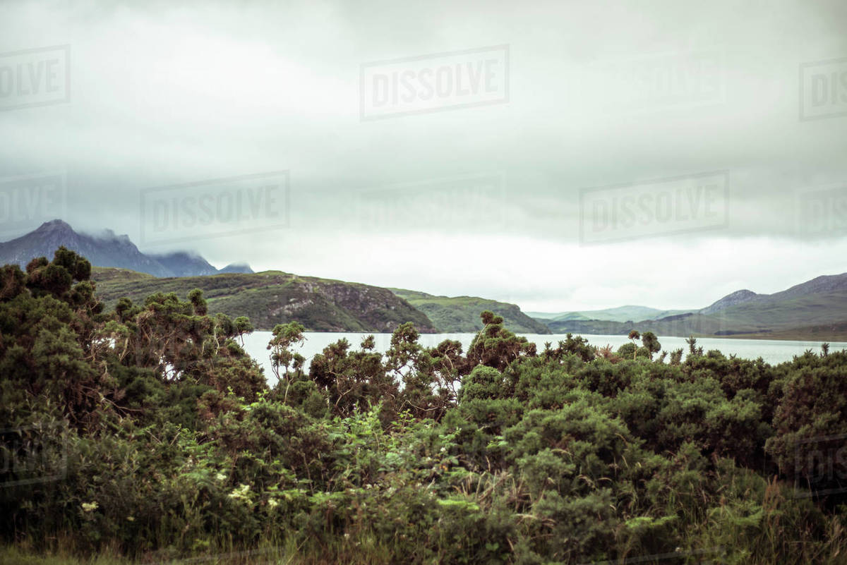 View of mountain and lake framed by green trees in clouds Royalty-free stock photo