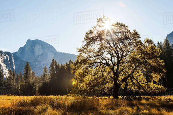 Scenic view of Yosemite National Park against sky on sunny day Royalty-free stock photo