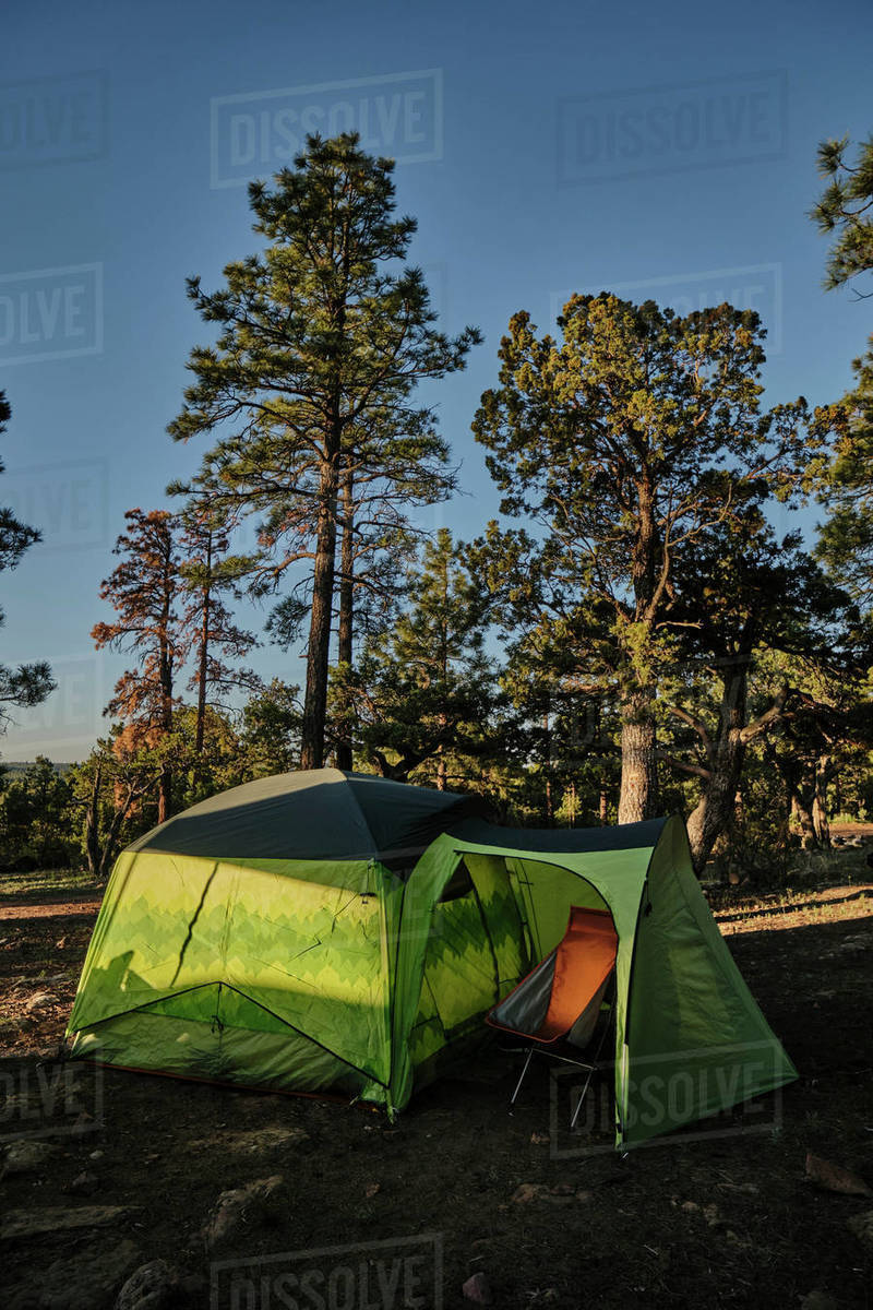Sunrise at basecamp on the Mogollon Rim, in Central Arizona's forest. Royalty-free stock photo