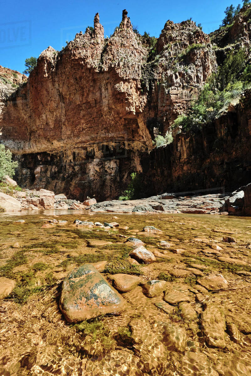 A view looking up stream on Cibeque Creek, on the Cibeque Falls hike. Royalty-free stock photo
