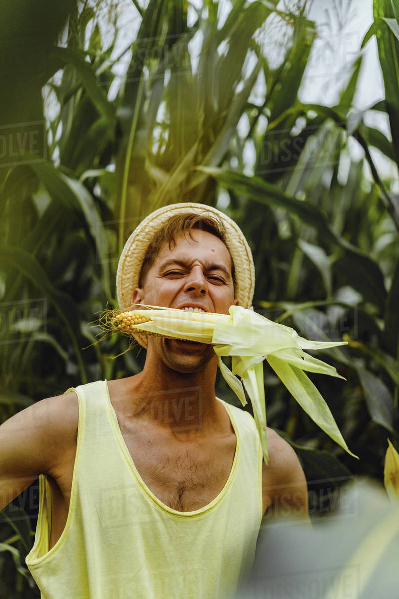Portrait of a farm man in a hat in a  field eating leaves of a corn. Royalty-free stock photo