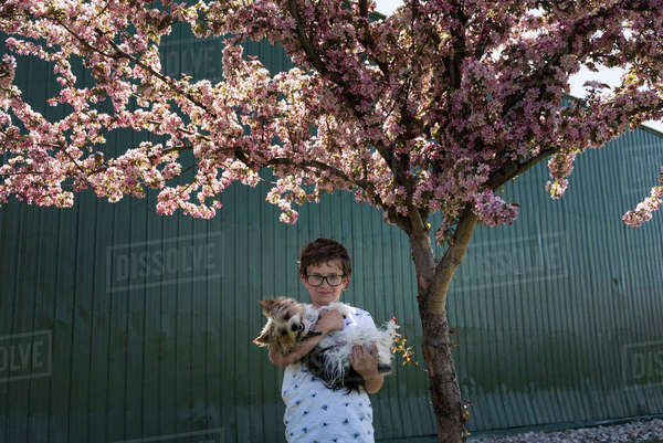 Portrait of boy carrying dog while standing by tree against corrugated iron Royalty-free stock photo